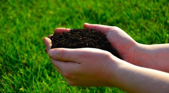 vegware compost waste bpi fpi composting